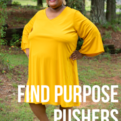 Find Purpose Pushers feat. Rita Pardo